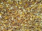 Poultry Mixed Corn